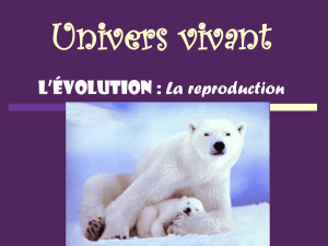 L`évolution - WordPress.com