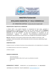 Master intelligence Marketing et veille comme - E