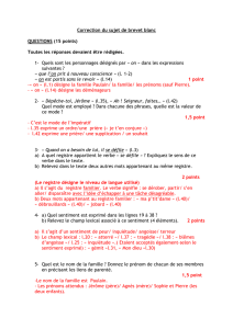 brevet blanc déc 2014 correction