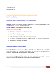 partie 1: diagnostic financier et analyse financiere - E