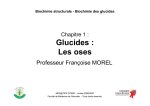 Glucides : Les oses