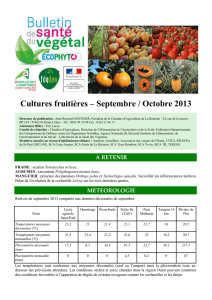 Cultures fruitières – Septembre / Octobre 2013