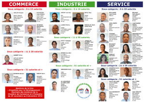 COMMERCE SERVICE INDUSTRIE