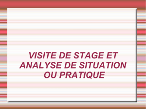 Visite de stage et analyse de situation