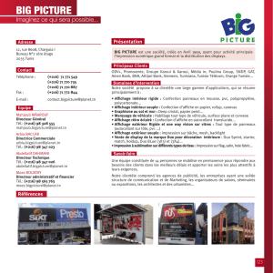big picture - Pros de la com