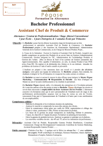 Bachelor Professionnel