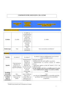 34355 - Comparatif association GIE et GCSMS