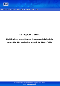 Le rapport d`audit - Union Des Experts Comptables