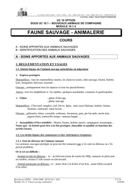 04 Faune sauvage Animalerie Cours v0109