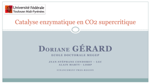 Catalyse enzymatique en CO2 supercritique