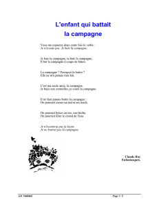 L`enfant qui battait la campagne 1. Vocabulaire