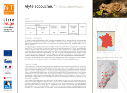 Alyte accoucheur, Alytes obstetricans