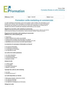 Formation veille marketing et commerciale