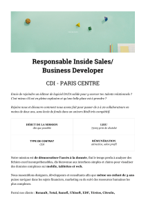 Responsable Inside Sales
