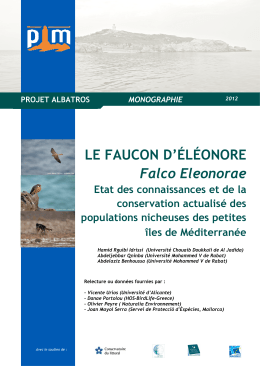 Falco Eleonorae_Final _French