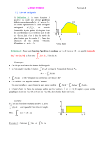 Calcul integral (PDF