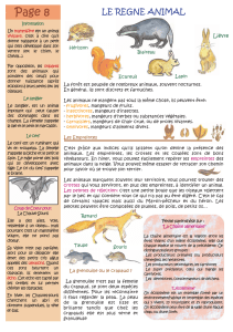 Page 8 Le règne animal.ai