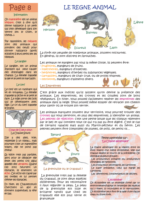 règne végétal animal