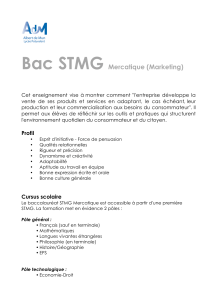 Bac STMG Mercatique (Marketing)