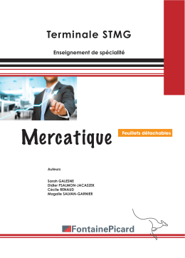 Mercatique - Fontaine Picard