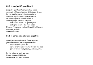 G8 : L`adjectif qualificatif