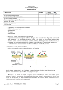 1 ST2S / AP Evaluation diagnostique septembre 2012 Compétences