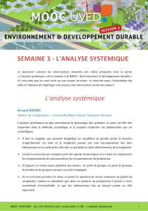 L`analyse systémique