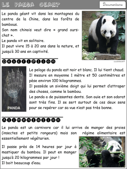 Documentaire « Le panda géant