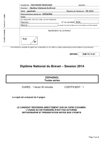 Diplôme National du Brevet – Session 2014