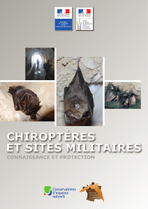 Chiroptères et sites militaires - Plan National d`Actions Chiroptères