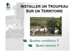 Installer un troupeau