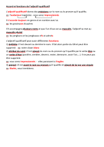 Accord et fonctions de l`adjectif qualificatif L`adjectif qualificatif