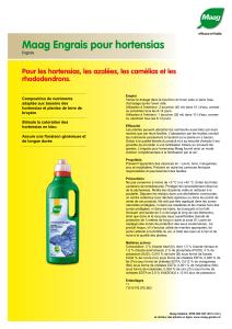 14/L Arrosoir en plastique vert w//Noir Grand Rose patchs T/ête pour l/égumes et plantes