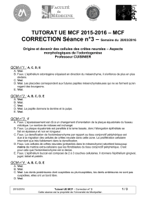– CORRECTION Séance n°3 – MCF