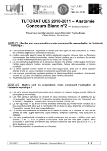 Concours Blanc n°2 – – Anatomie