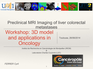 Workshop: 3D model and applications in Oncology Preclinical MRI Imaging of liver colorectal