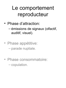 Le comportement reproducteur • Phase d'attraction: • Phase appétitive: