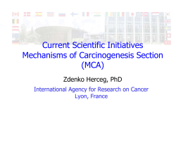 Current Scientific Initiatives Mechanisms of Carcinogenesis Section (MCA) Zdenko Herceg, PhD