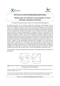 POST-DOC DE 2 ANS EN BIOMECANIQUE/BIOPHYSIQUE