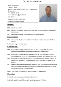 CV : Master marketing