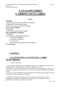 canalopathies cardiovasculaires