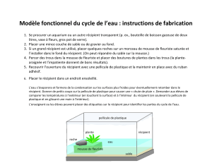 Modèle fonctionnel du cycle de l'eau : instructions de fabrication