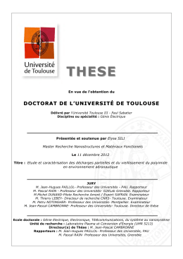 THESE DOCTORAT DE L'UNIVERSITÉ DE TOULOUSE  En vue de l'obtention du