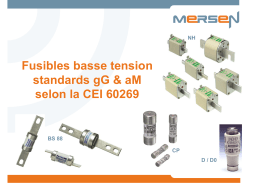 Fusibles basse tension standards gG & aM selon la CEI 60269 NH