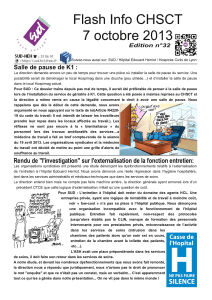 Flash Info CHSCT 7 octobre 201 3 Edition n°32