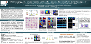 MALDI imaging-guided microproteomics workflow for biomarker discovery of intra-tumor heterogeneity
