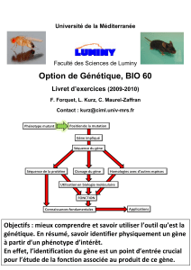 Option de Génétique, BIO 60