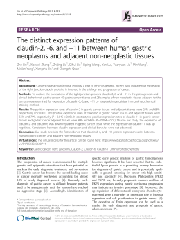 The distinct expression patterns of −11 between human gastric claudin-2, -6, and