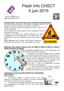 Flash Info CHSCT 5 juin 201 5