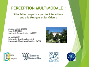 PERCEPTION MULTIMODALE : Stimulation cognitive par les interactions